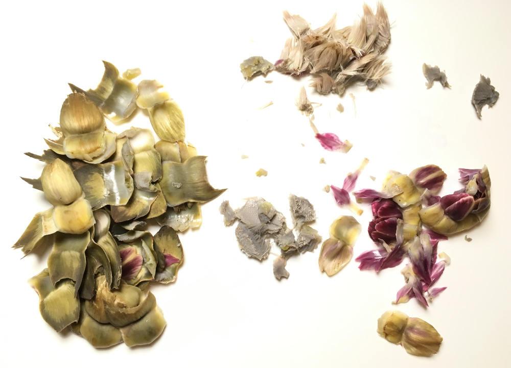 Onderdelen van de gekookte artisjok