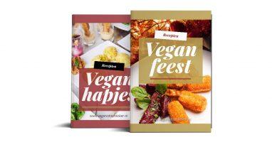 vegan feestbundel