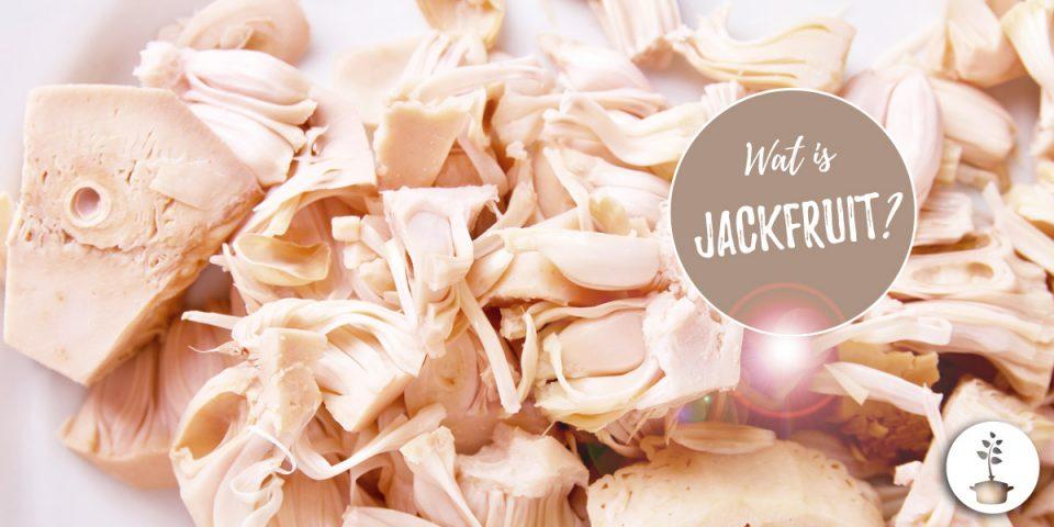 Jackfruit - wat is het, hoe bereiden en hoe eten