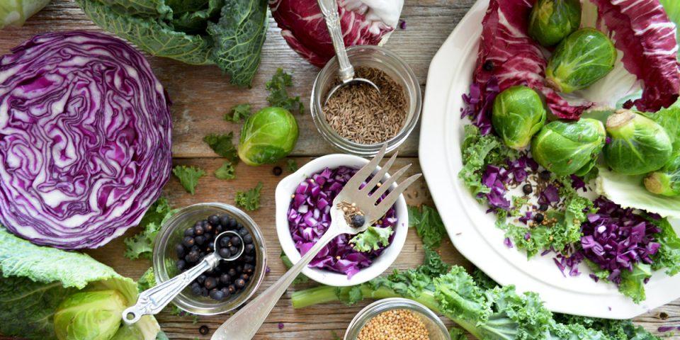 Kool bewaren en inmaken - recepten, tips voor rode kool, groene kool, boerenkool, witte kool en palmkool
