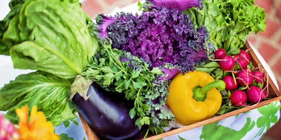 Whole food plant based - wat is het en tips voor beginners